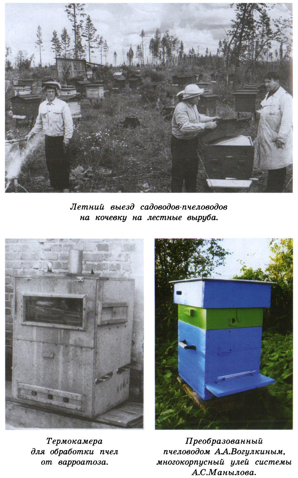 Своими руками термокамеру для обработки пчел
